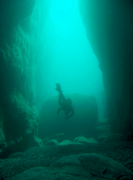 Tory_Island_diving_2004.png